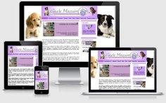 criação de site de veterinária