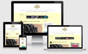 portfólio gauchaweb criação de sites em porto alegre blog comida simples